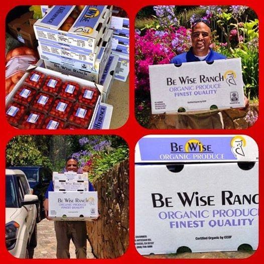 be wise ranch csa