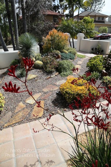 Of San Go S Drought Tolerant Landscaping Contest I Was On It D Visited Her Garden Earlier During The Horticultural Society Spring Tour