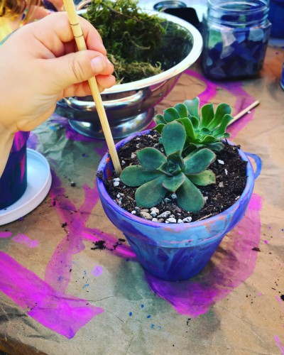 Infinite Succulent kids paint and plant01