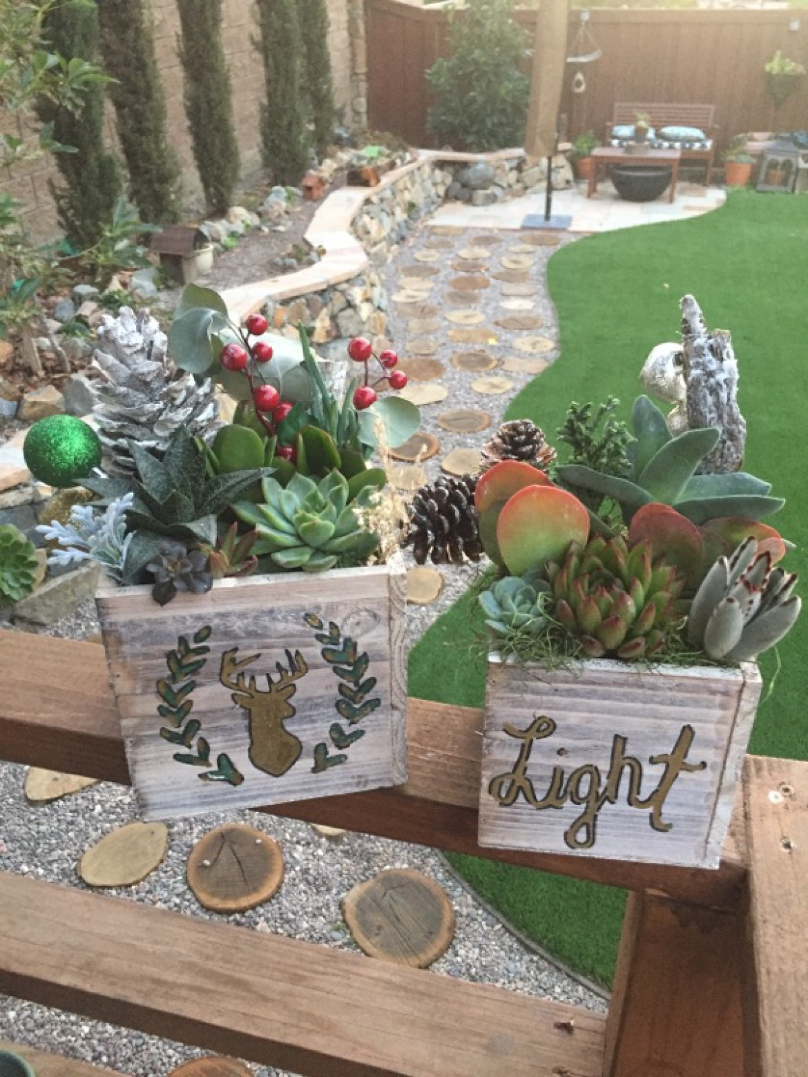 Family-Friendly Holiday Succulent Box Workshop