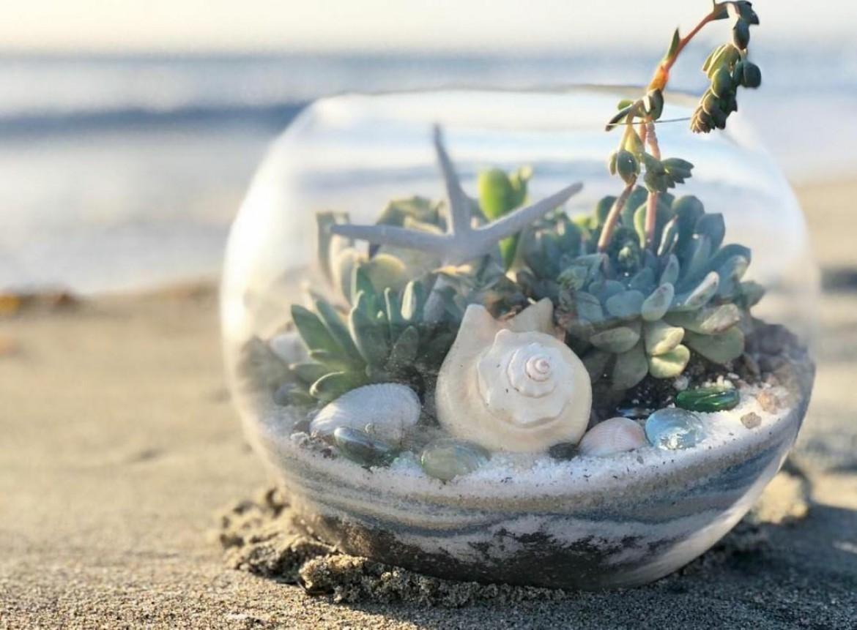 Summer Seascape Terrarium Workshop