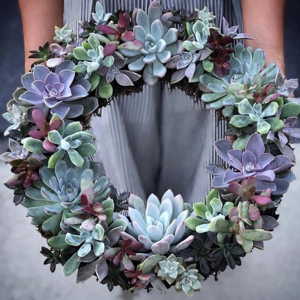 Good Morning Cactus wreath